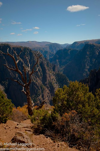 park trees mountain black nature clouds landscape colorado canyon national gunnison