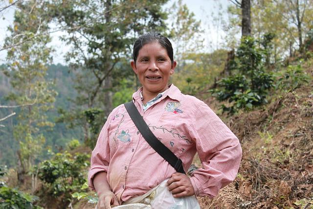 Finca El Puente, Honduras, November 2010