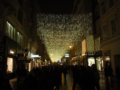 Vienna lights