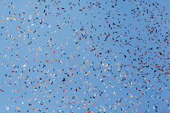 Confetti Against a Blue Sky