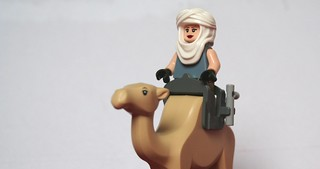 Lara of Arabia