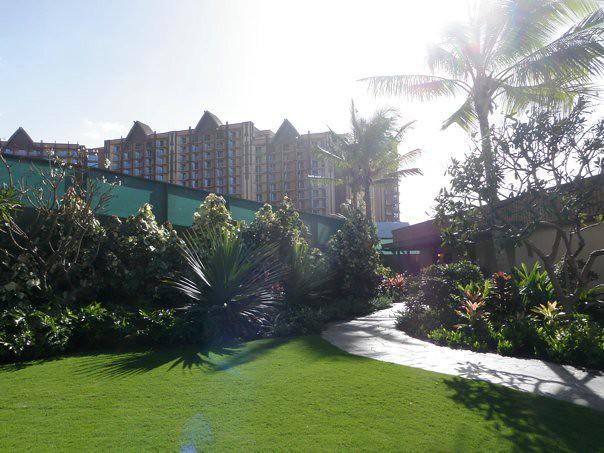 Aulani Hotel Room Standard View