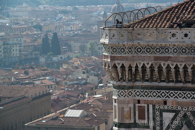 Viewing Florence