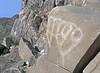 Petroglyphs / Swansea Site