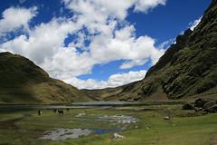 Mon, 17/03/2008 - 11:31 - Upland lake, Andean Potato Park, Peru