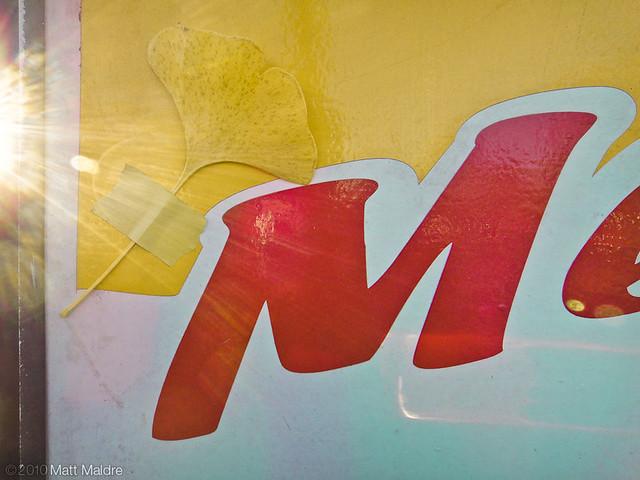 Yellow ginkgo leaf on Mechanic sign