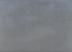floor(0.0), plywood(0.0), textile(0.0), brown(0.0), line(0.0), tile(0.0), flooring(0.0), grey(1.0),