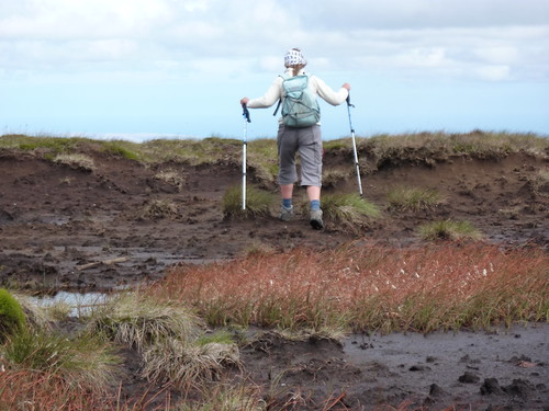 Storming off over the bog
