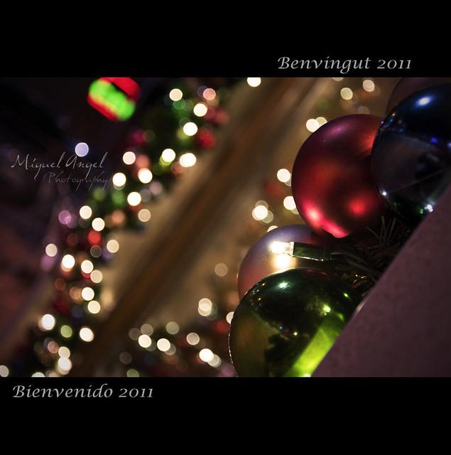 Bienvenido/Benvingut 2011