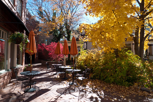 Autumnal Cafe Courtyard by Zane Selvans on flickr
