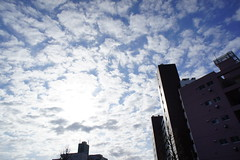cirrocumulus うろこ雲