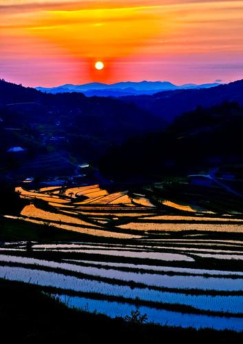 無料写真素材|自然風景|朝焼け・夕焼け|田園・農場|風景日本