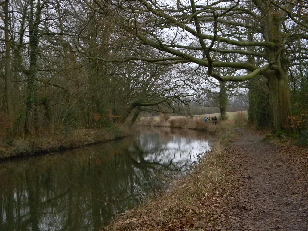 Basingstoke Canal Winchfield Circular