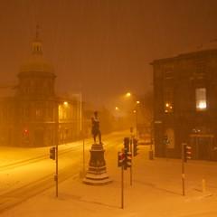 Rabbie:  Squared in Snow.