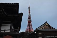 Tokyo Tower through Zojoji