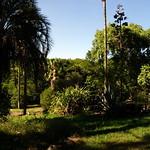 Bild von Botanical Garden in der Nähe von Porto Alegre. botanicalgarden
