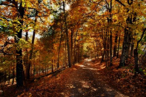fall landscapes nikon events creative d3 onone