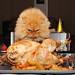 Garfi-Happy Thanksgiving... by E.L.A