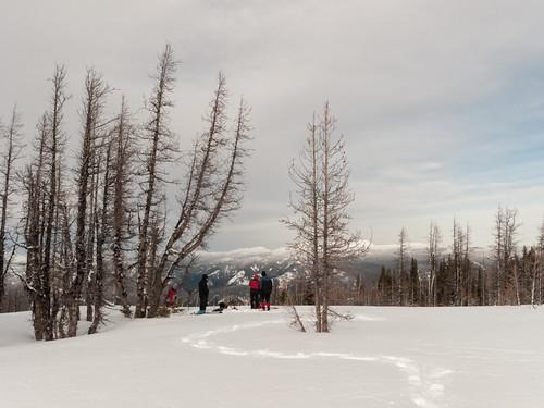 snowshoe manningpark mtfrosty