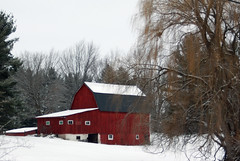 barn(1.0), hut(1.0), winter(1.0), tree(1.0), snow(1.0), shack(1.0), house(1.0), sugar house(1.0), rural area(1.0),