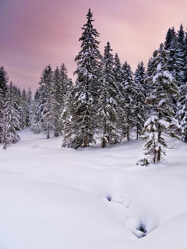 Austria - Gosau: Winter Dreamland par John & Tina Reid