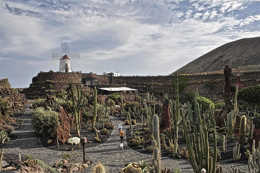 Cactus Garden, Lanzarote