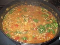 stew, curry, vegetable, food, korma, dish, cuisine,