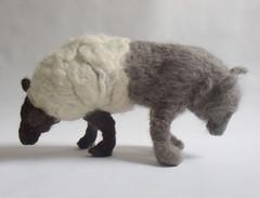 sheepwolf 2010