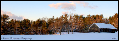 trees winter sky snow cold field clouds barn maine newengland alfredmaine