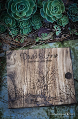 A Marriage Proposal Scene Rustic Wedding Guest Book