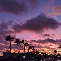 #NoFilter #noEdits beautiful evening in #GulfPortFL #getGulfported