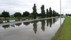 flood(0.0), bayou(0.0), disaster(0.0), pond(0.0), wetland(1.0), tree(1.0), river(1.0), reflecting pool(1.0), residential area(1.0), reflection(1.0), canal(1.0), waterway(1.0),