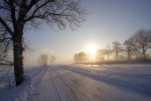 road winter mist snow sunshine sweden halo sverige sundog hdr östergötland sigma1020mmf456exdchsm canoneos7d