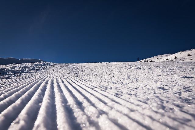 groomed & skirun