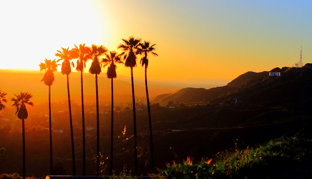 Hollywood Sunset Sign Wallpaper