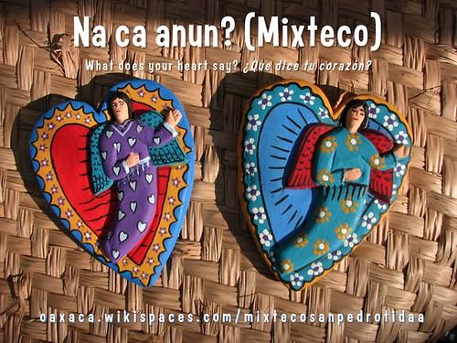 What does your heart say? (na ca anun?) Mixteco de San Pedro Tidaa #indigenous #oaxaca