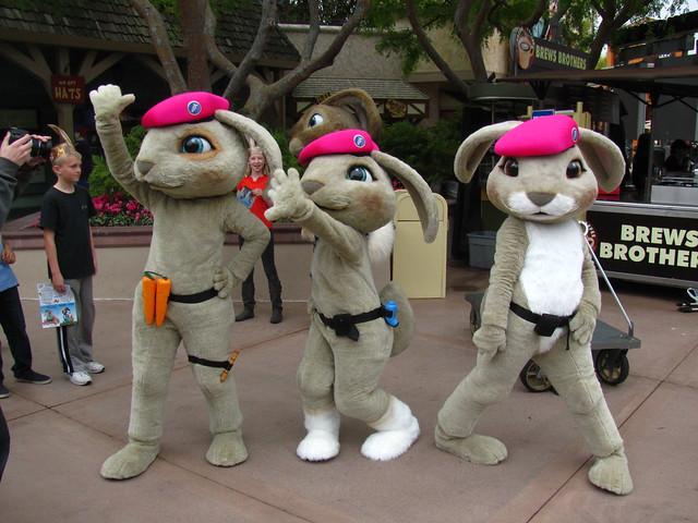 Meeting the Pink Beret Bunnies at Universal Studios