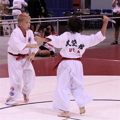 individual sports, contact sport, taekwondo, sports, combat sport, martial arts, karate, japanese martial arts,