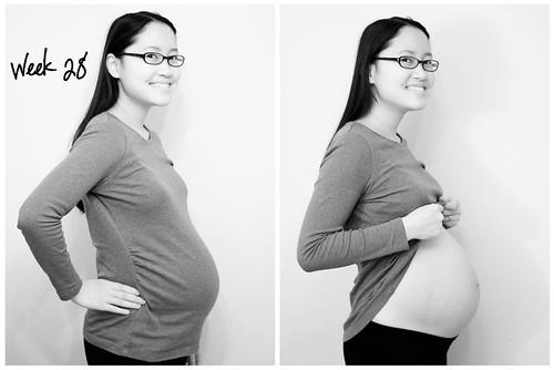 Pregnancy - Week 28