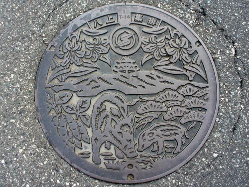 Yakami Sasayama Hyogo manhole cover(兵庫県篠山市八上のマンホール)