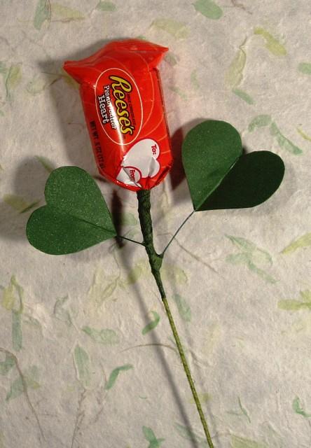 Peanut butter Rose