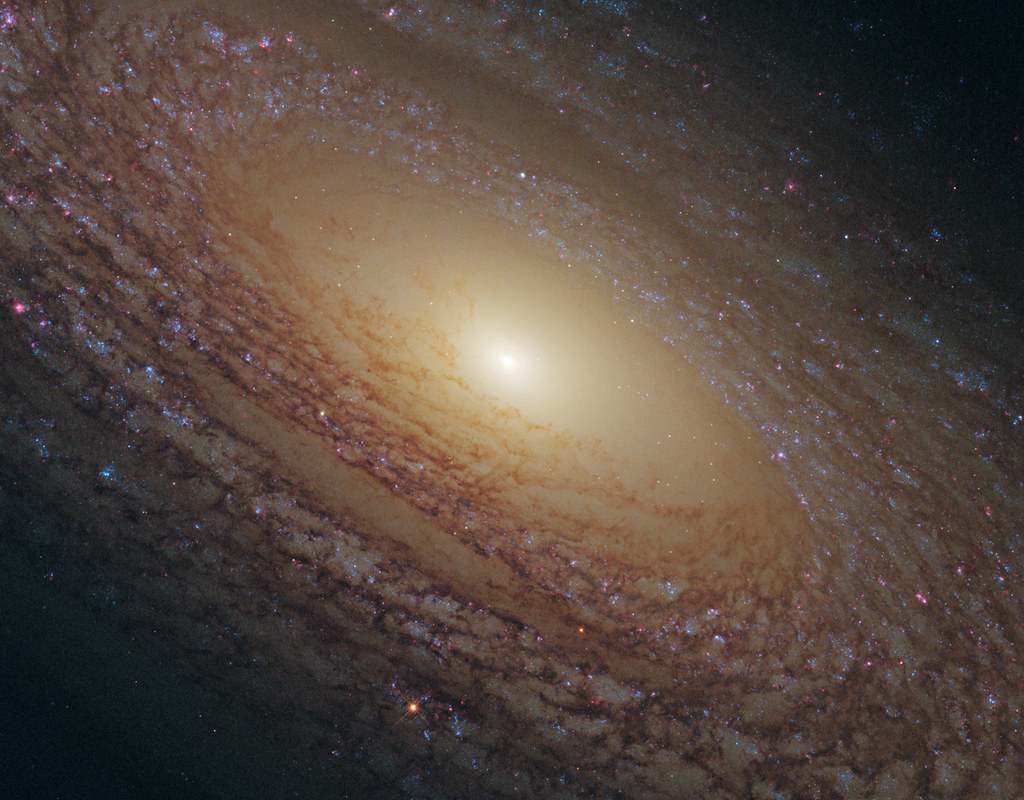 NASA's Hubble Sees A Majestic Disk of Stars