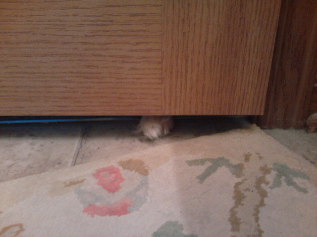 Under the bathroom door