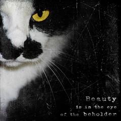 Beauty is ...