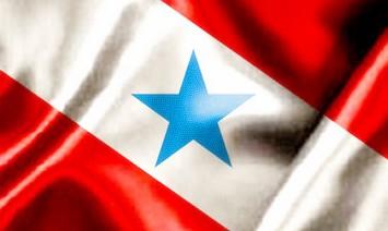 Resultado de imagem para bandeira do pará