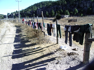 Washing drying on a barbed wire fence