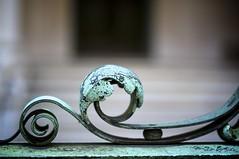 verdi-gris scroll
