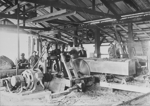 Unidentified sawmill, [NSW, n.d.]