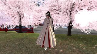 kimono 1_003