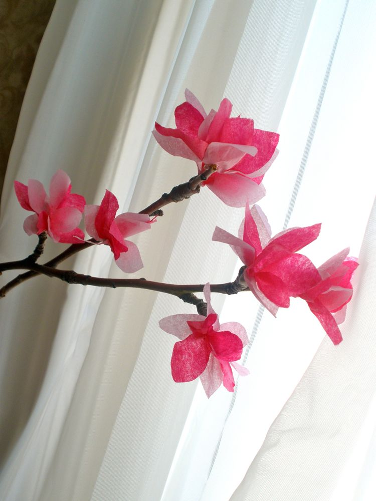 Tissue Paper Cherry Blossoms 2